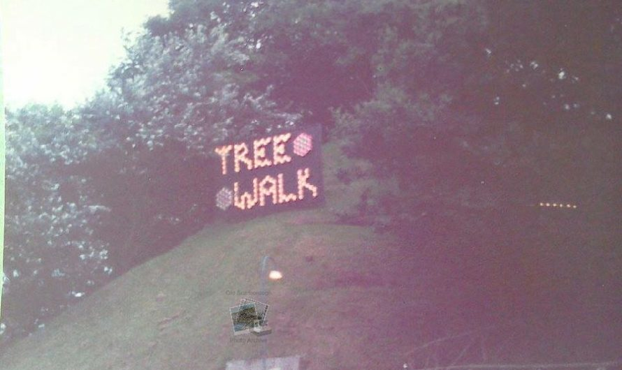 Tree Walk, Peasholm Park